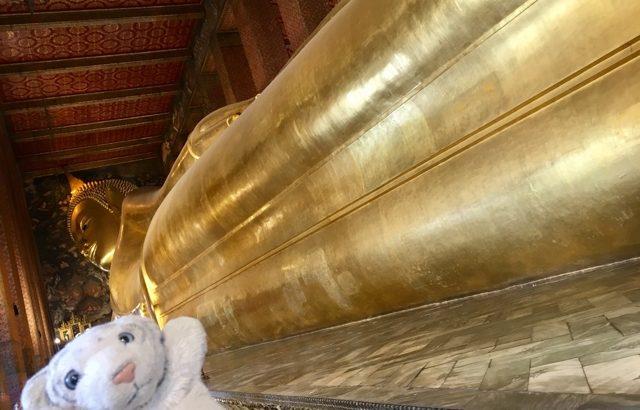 世界一周講座『意外と知らない? 世界の宗教 仏教編』