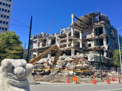【かいぬし手記】被災地・クライストチャーチから、震災と復興について考える