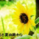 【小説・キミと夏の終わり】第九話:友情よ永遠に