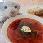 【もろたべ】広くて寒い国だから生まれたロシア料理なの!