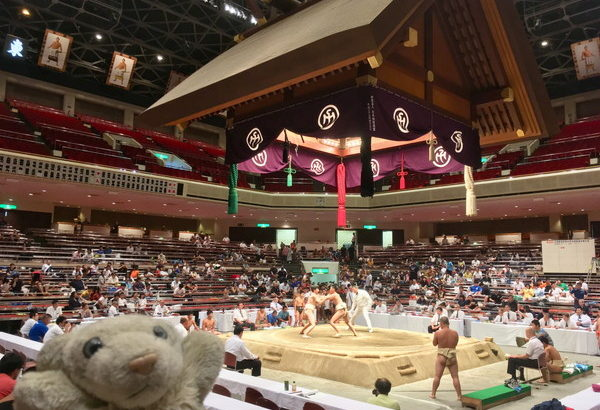 【両国】相撲の町! 国技館で無料で相撲観戦しちゃったなの!