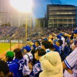 【神宮球場】屋外球場での野球観戦は気持ちいいなの!