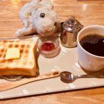【田原町・もろたべ】日本一の食パンを使ったモーニングなの!【ペリカンカフェ】