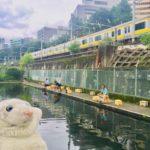 【市ケ谷】都心のど真ん中で魚釣りなの!