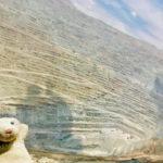 """【28.チリ】鉱山だらけの国で、かいぬしさんが""""鉱山病""""発症なの!?"""