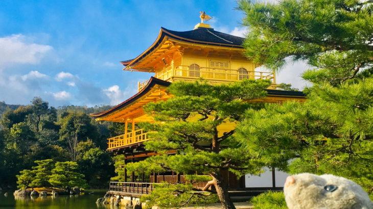 【古都京都の文化財】京都にある世界遺産17件を制覇したなの!