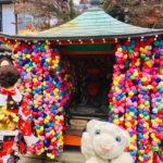 【京都】世界遺産以外にも見どころ盛りだくさんなの!