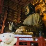 【古都奈良の文化財】奈良の世界遺産がっつり旅なの!!【&法隆寺】