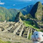 【30.ペルー】不思議な遺跡いっぱいの観光超大国なの!