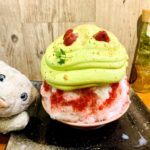 【かき氷】暑い夏に食べたい素敵なかき氷たちなの!