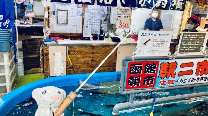 【函館グルメ】日本一のご当地バーガーと生きたまま食べるイカなの!